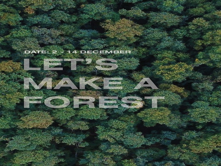LET'S MAKE A FOREST